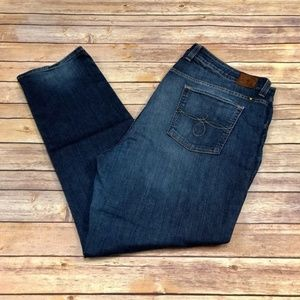 Lucky Brand Jeans - Lucky Brand Plus Size Ginger Straight Jeans Dark